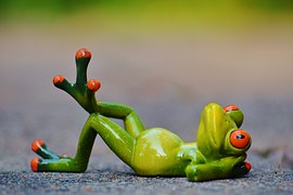 frog-914523__180